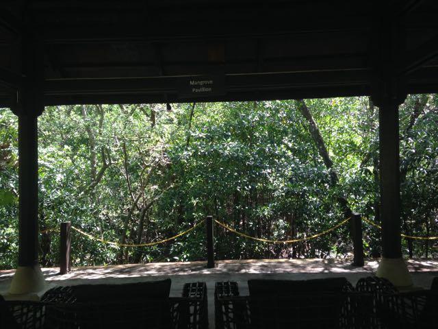 Mangrove Pavilion