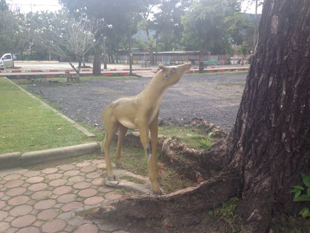 Another clue about the presence of the dogs at Wat Chalong